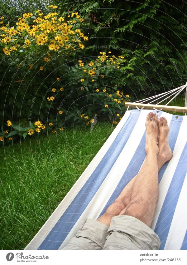 hammock Relaxation Break Restful Legs Feet Hammock Lie Couch Calm City life Garden Garden plot Copy Space Colour photo Sleep Tibia Tilt