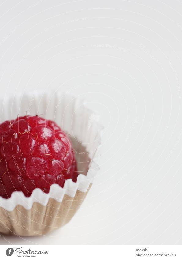 White Red Fruit Nutrition Food Appetite Candy Delicious Isolated Image Snack Confectionary Tasty Raspberry Finger food Food photograph