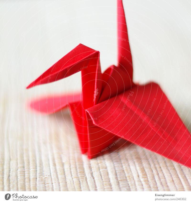 crane Animal Crane 1 Esthetic Sharp-edged Bright Red Origami Arts and crafts  Wing Beak Paper paper crane Japanese longevity Handicraft Fun with handicrafts