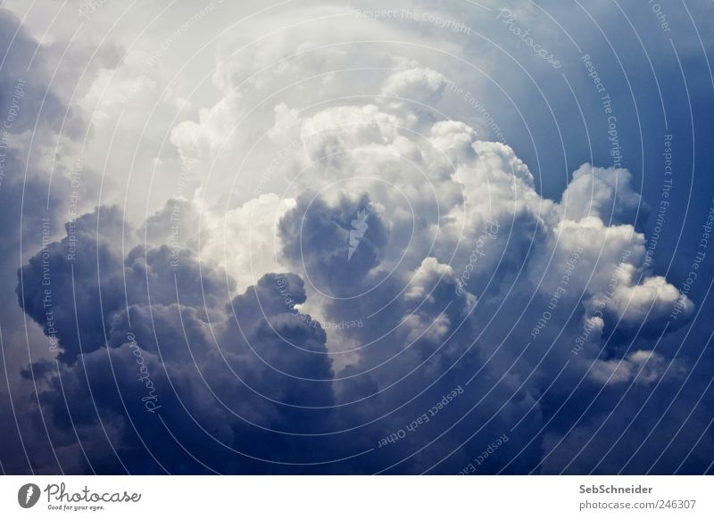 Cumulus Environment Nature Elements Sky Sky only Clouds Storm clouds Summer Weather Bad weather Wind Rain Thunder and lightning Exceptional Wet Blue White Know