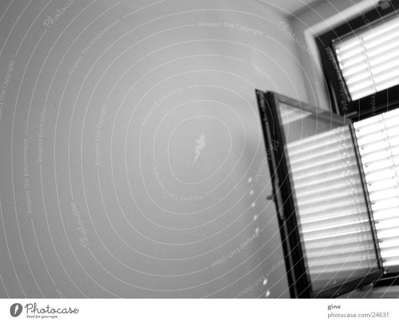 Wall (building) Window Living or residing Mirror