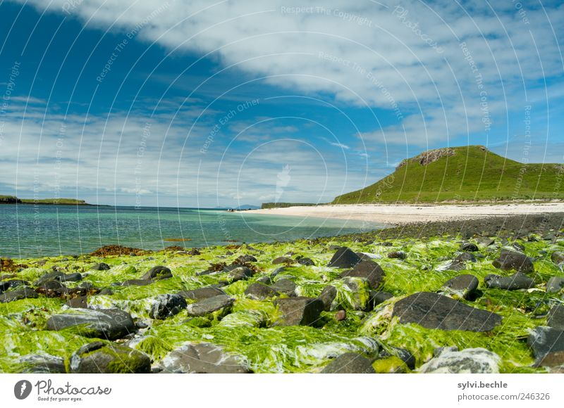 Scotland III Environment Nature Landscape Sand Water Sky Clouds Summer Climate Beautiful weather Plant Hill Mountain Coast Beach Bay Ocean Blue Green