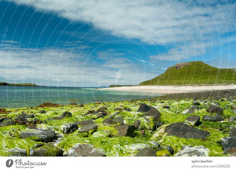 Sky Nature Water Green Blue Plant Summer Beach Ocean Clouds Mountain Landscape Environment Sand Stone Coast