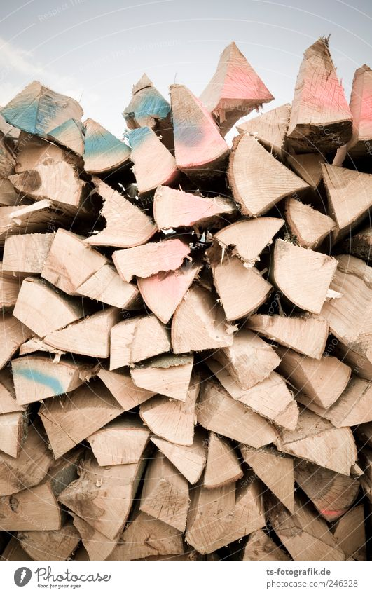 Splitter! Agriculture Forestry Energy industry Environment Tree Wood Graffiti Brown Firewood Funeral pyre Fallen furnace wood stack Fuel Ecological Colour photo