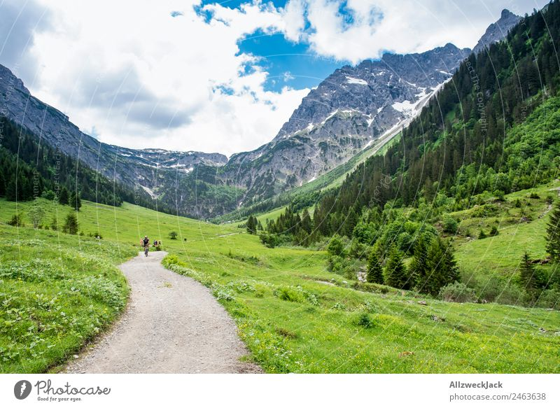 Hiking trail through a valley in South Tyrol Day Beautiful weather Clouds Nature Green Tree Forest Mountain Idyll Vacation & Travel Travel photography