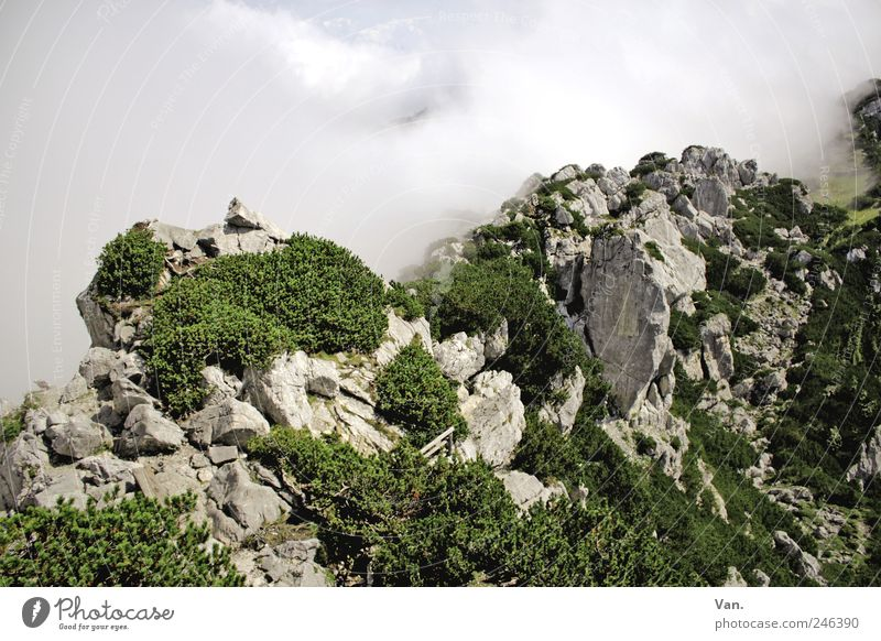 Sky Nature Vacation & Travel Plant Green White Landscape Clouds Mountain Environment Freedom Rock Tourism Weather Air Earth