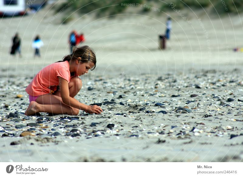 discover your world Summer Summer vacation Ocean Girl Environment Nature Sand Climate Weather Coast North Sea Island Touch Kneel Flotsam and jetsam Mussel