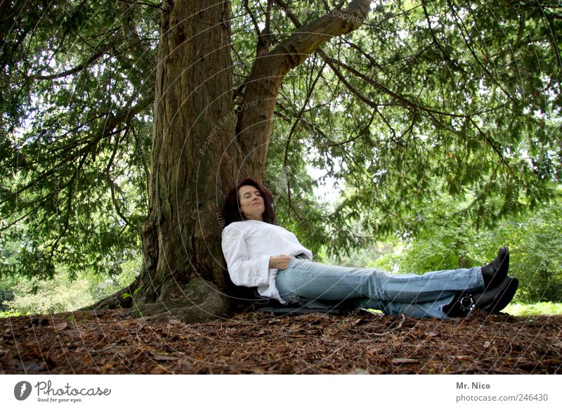 Woman Nature Tree Plant Leaf Loneliness Forest Relaxation Environment Adults Dream Legs Park Contentment Earth Lie