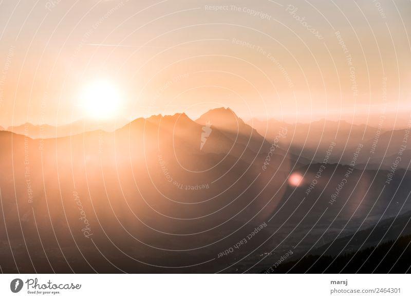 Nature Summer Sun Landscape Relaxation Calm Mountain Freedom Hiking Illuminate Idyll Joie de vivre (Vitality) Peak Hope Alps Harmonious