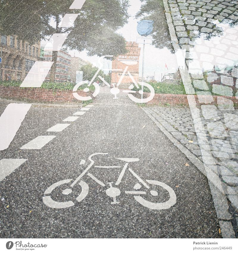 Street Lanes & trails Bright Leisure and hobbies Bicycle Trip Transport Perspective Stripe Driving Sidewalk Footpath Wheel Traffic infrastructure Vehicle