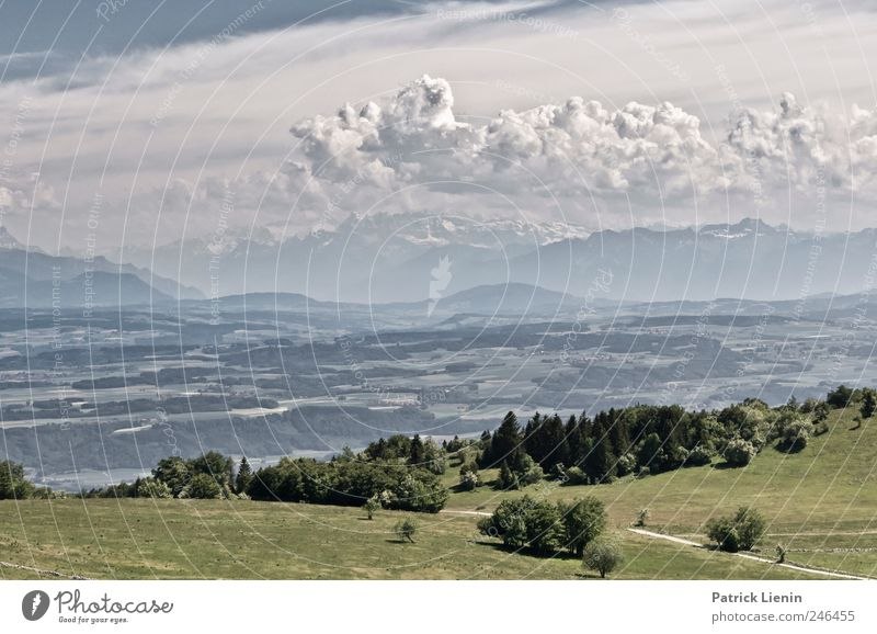 Sky Nature Vacation & Travel Summer Landscape Clouds Far-off places Forest Environment Mountain Meadow Freedom Weather Tourism Hiking Climate
