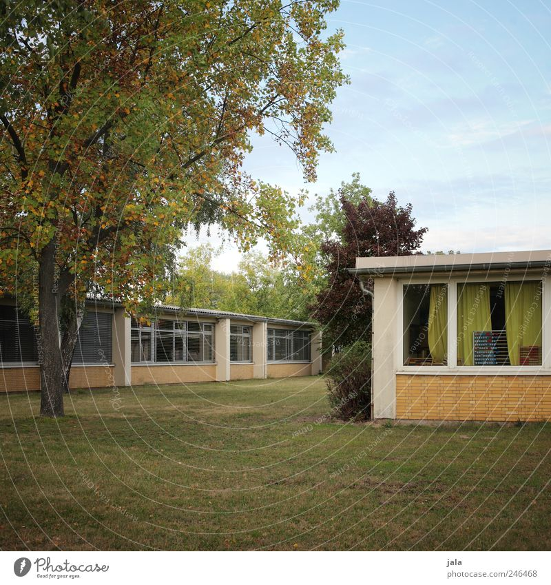 school Nature Sky Plant Tree Grass Bushes Foliage plant Meadow House (Residential Structure) Manmade structures Building Wall (barrier) Wall (building) Window