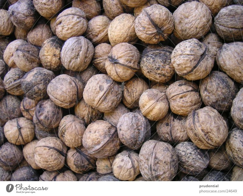 Nature Nutrition Autumn Brown Walnut