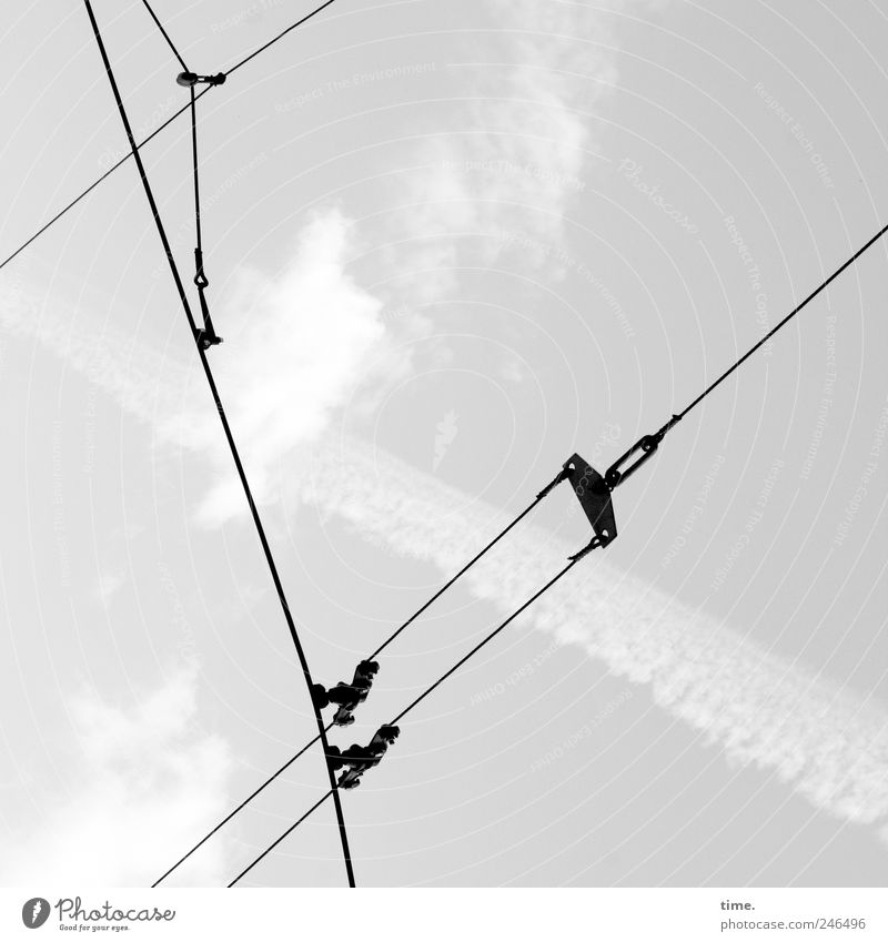 city synapses Diagonal Overhead line Cable Steel cable Wire Wire cable Clouds Illustration Crucifix Line Vapor trail Electricity Tension Worm's-eye view