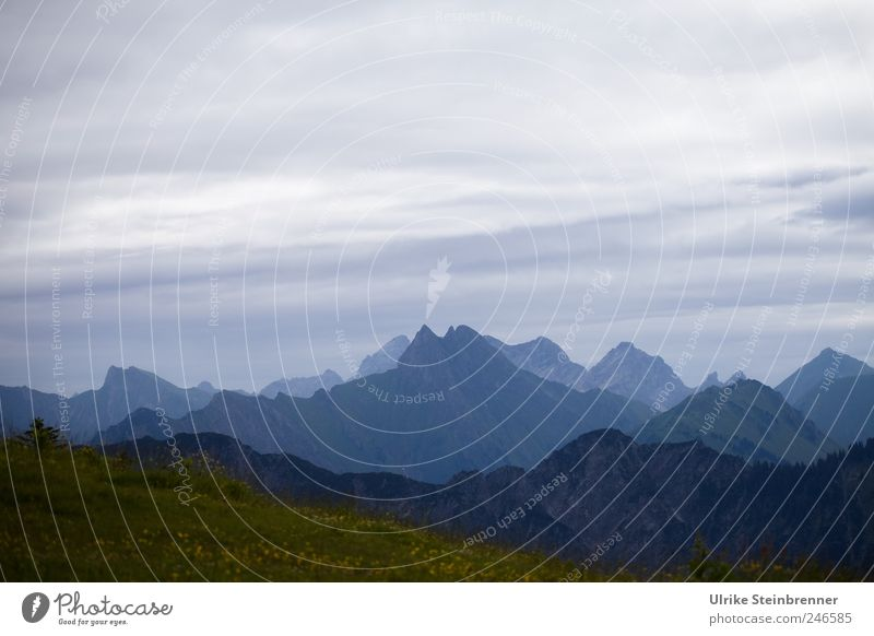 zigzag Nature Landscape Sky Clouds Summer Bad weather Grass Hill Rock Alps Mountain Allgäu Alps Bavaria fellhorn Peak Stand Dark Gigantic Infinity Tall Natural