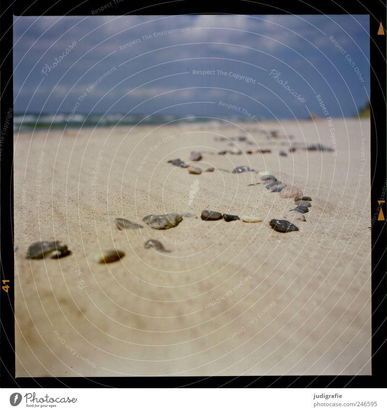 Baltic Environment Nature Landscape Sand Coast Beach Baltic Sea Stone Natural Line Wiggly line Colour photo Exterior shot