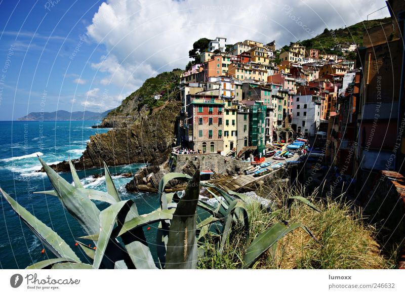 RIOMAGGIORE Vacation & Travel Tourism Trip Far-off places Sightseeing Living or residing Nature Water Clouds Sunlight Summer Aloe Waves Coast Bay Ocean