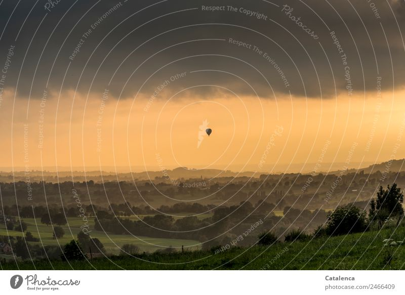 Float off into the evening light Adventure Far-off places Freedom Summer Balloon flight Landscape Sky Clouds Tree Grass Meadow Field Forest