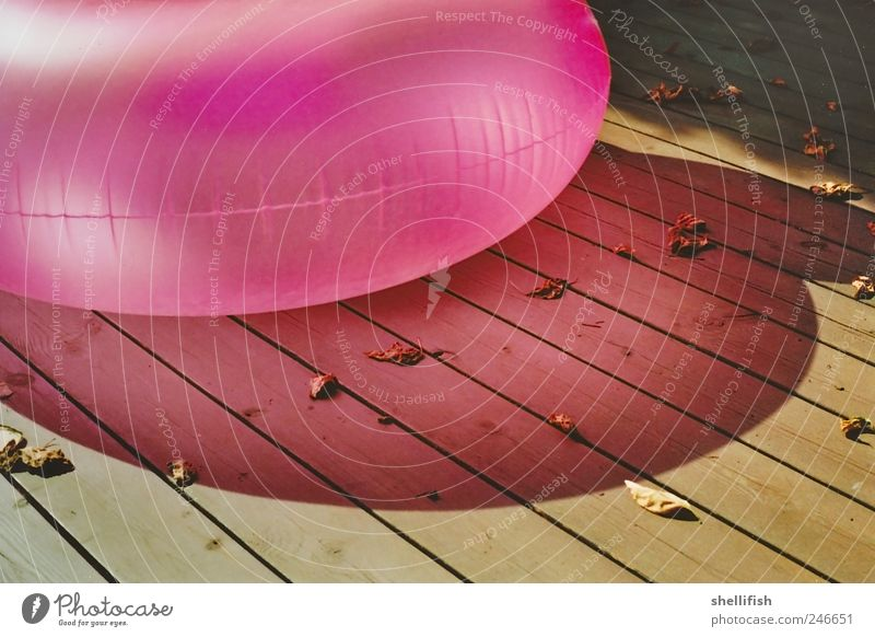 Pink Luftwurst Balloon Wood Esthetic Idyll Calm Swimming & Bathing Footbridge Inflatable Air Wooden board Leaf Summer Relaxation caustics Shadow play