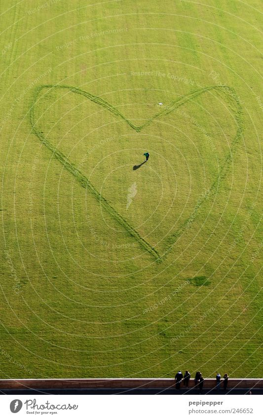 recognition after love Valentine's Day Mother's Day Football pitch Human being Masculine Man Adults 1 5 Artist Summer Grass Meadow Wall (barrier)