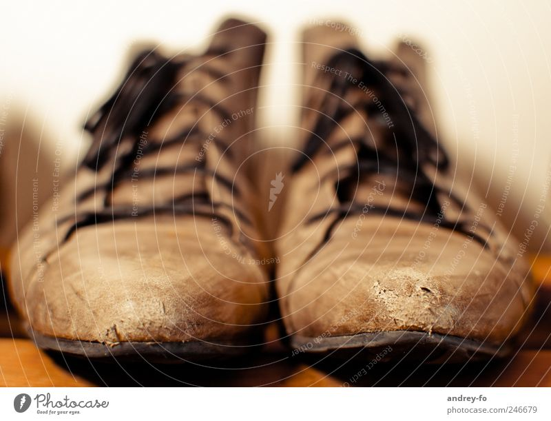 Shoes. A little worn. Leather Old Brown Optimism Footwear half boots Boots Laced boot Shoe sole Shoe rack Clothing Direct Modern Considerable Colour photo
