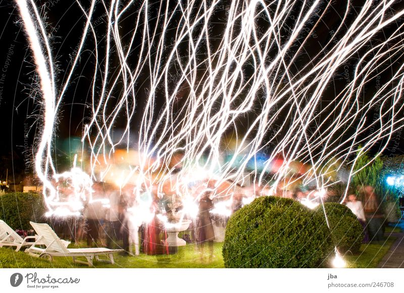 departure Human being Group Bushes Park Meadow Dress Suit Plastic Feasts & Celebrations Flying Glittering Illuminate Dream Elegant Free Happiness Bright Happy