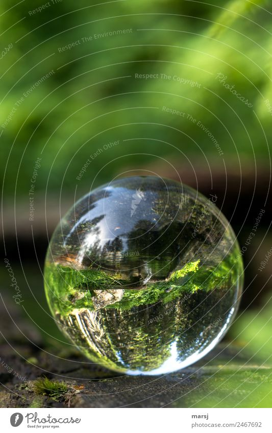 Nature Water Green Life Lie Power Glass Hope Well Harmonious Sphere Refreshment Spherical