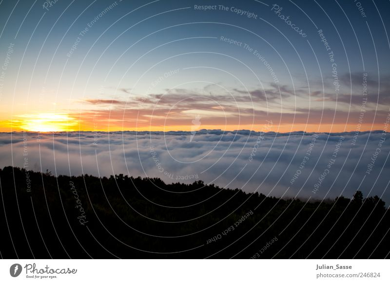 Sky Blue Sun Summer Clouds Mountain Landscape Horizon Esthetic Soft Comforting Tenerife Fluffy Teide Above the clouds