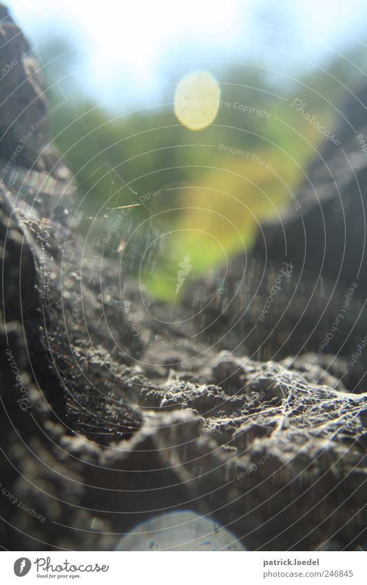 Nature Mountain Fear Rock Wild Hope Threat Elements Climbing Creepy Spider Sharp-edged Spider's web Cave Point of light Cervice