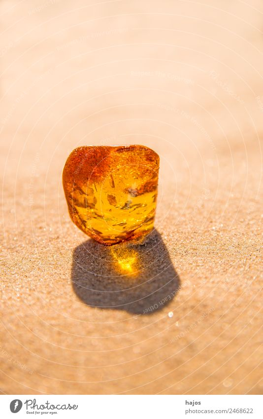 Amber with inclusions Nature Fashion Bright Beautiful Yellow luminescent Brilliant Beach Inclusion Mystic Stone Harz Old find lithotherapy curative transparent