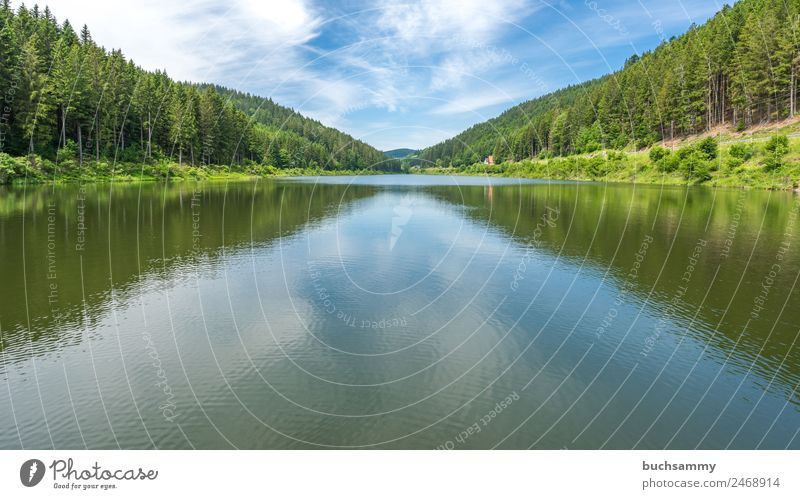 Dam in the Black Forest Vacation & Travel Tourism Trip Hiking Energy industry Renewable energy Hydroelectric  power plant Energy crisis Environment Nature