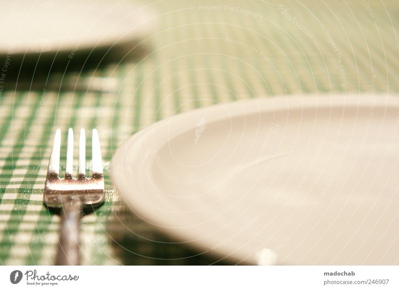 Nutrition Food Contentment Arrangement Esthetic Gastronomy Crockery Plate Checkered Fork Tablecloth Petit bourgeois Cutlery Meticulous