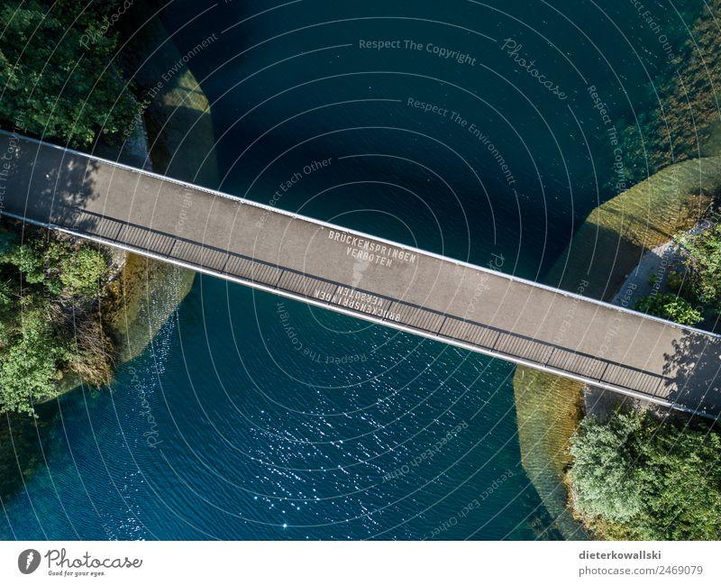 bridge Environment Water Bridge Movement Swimming & Bathing Jump Swimming lake Bans Demand Nature Watercraft Summer Dangerous Risk Exterior shot Day