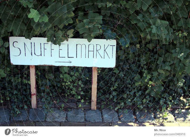 without words Plant Bushes Leaf Exotic Markets Roadside Signs and labeling Signage Netherlands Tourism Typography Flea market Exterior shot Ivy Wooden sign