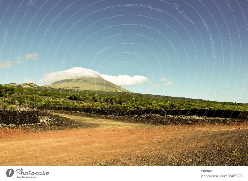 pico Environment Nature Landscape Plant Earth Summer Beautiful weather Field Hill Mountain Hot Bright Street Sand Pico Azores Gravel Colour photo Exterior shot