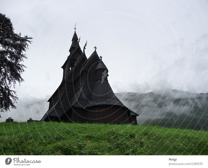 mysterious... Vacation & Travel Tourism Sightseeing Summer Mountain Nature Bad weather Fog Tree Grass Norway Village Church Manmade structures Architecture