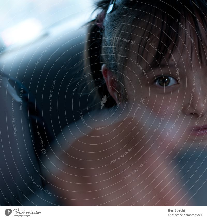 Backseat Princess Child Girl Head Hair and hairstyles Face Eyes Nose Mouth Lips 1 Human being 3 - 8 years Infancy Motoring Car Driving To hold on Gray Smiling