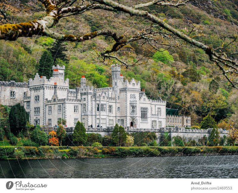 Ireland - Kylemore Abbey Vacation & Travel Tourism Trip Sightseeing Summer Summer vacation Landscape Beautiful weather Tree Mountain Pond Lake Connemara Palace