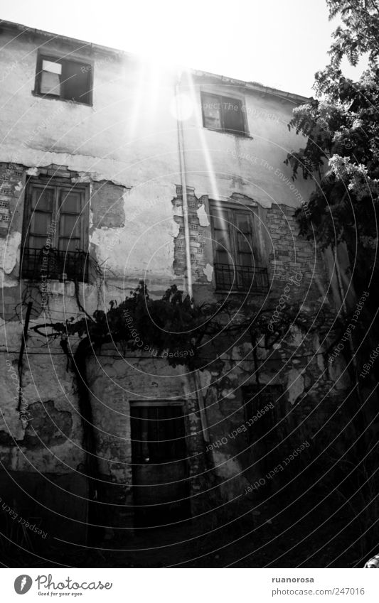 Old town House (Residential Structure) Detached house Ruin Facade Poverty Creepy Exposed Glittering Black & white photo Exterior shot Deserted Day Light Shadow