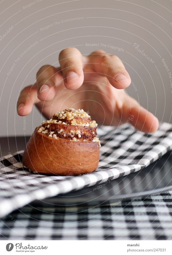 Hand Eating Brown Food Nutrition Sweet Appetite Candy Delicious Cake Baked goods Dough Alluring Avaricious Human being