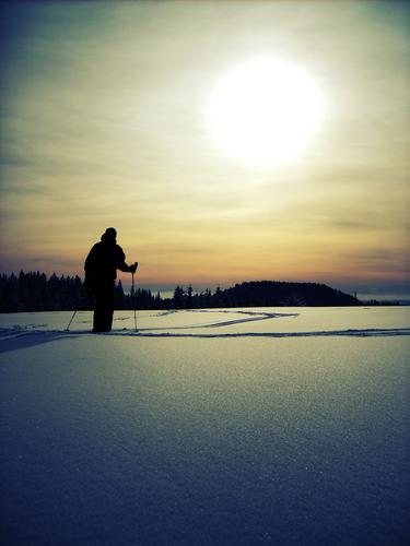winter Leisure and hobbies Adventure Winter Snow Winter vacation Sports Skiing Ski run Human being Masculine Man Adults 1 Environment Nature Landscape Sky