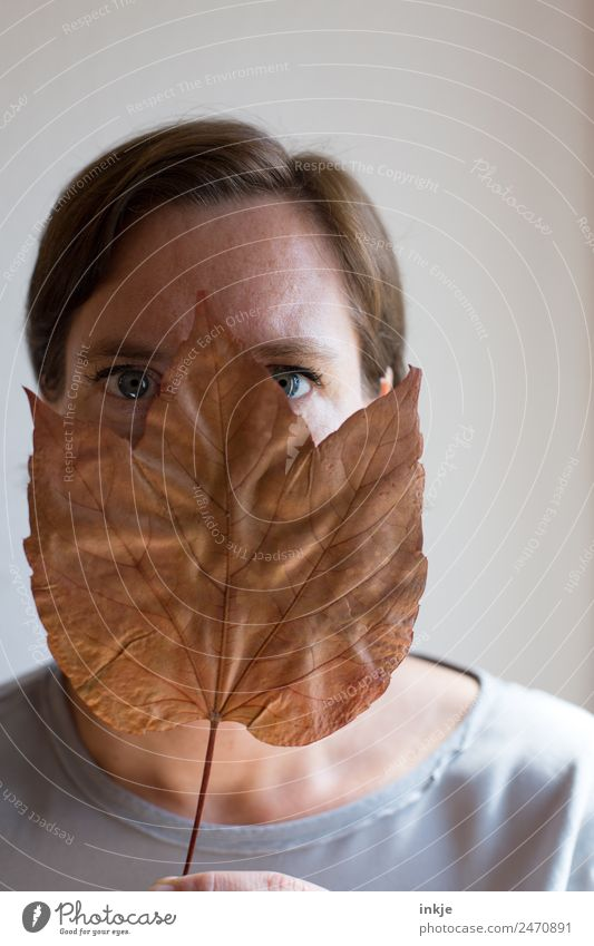 Woman Human being Blue Leaf Face Adults Eyes Life Brown Dry Hide 30 - 45 years Pressed Ogle