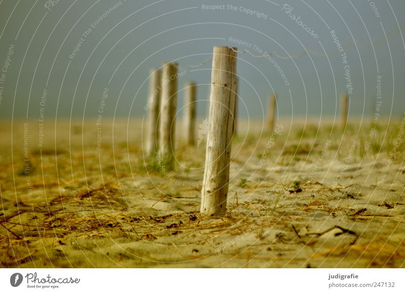 Nature Beach Environment Landscape Wood Sand Coast Moody Closed Arrangement Fence Baltic Sea Fence post