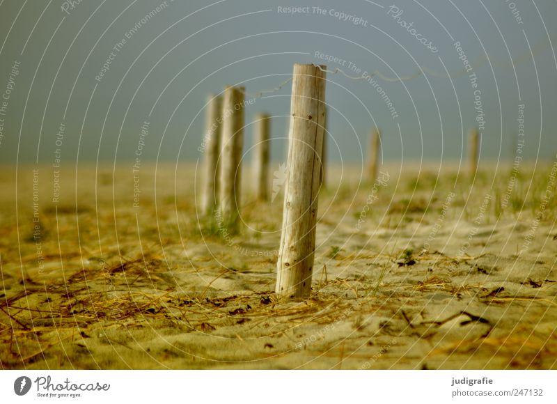 Nature Beach Environment Landscape Wood Sand Coast Moody Closed Arrangement Fence Baltic Sea Fence post