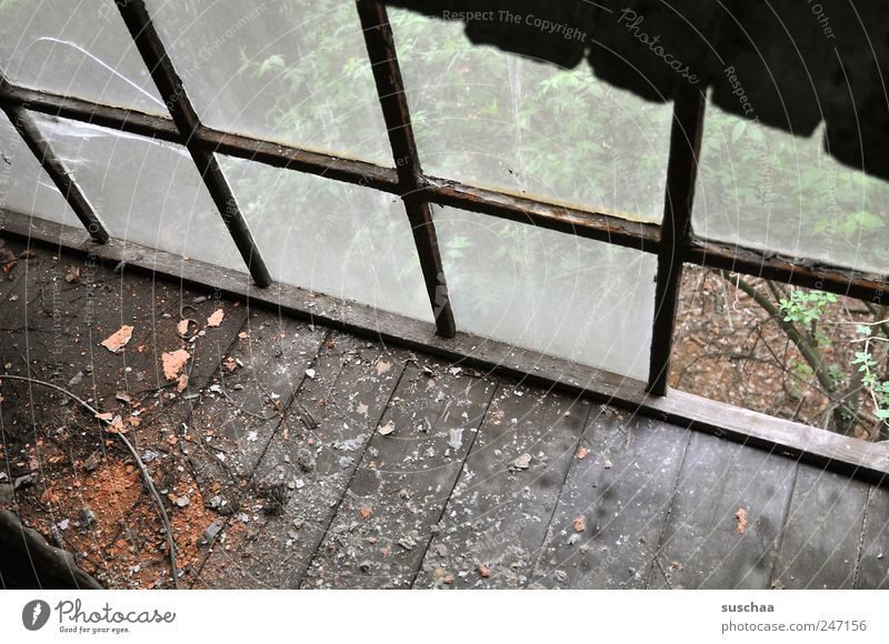 lost place II Ruin Building Window Wood Glass Old Dirty Dark Hideous Broken Chaos Decline Past Transience Change Destruction Wooden floor outlook Uninhabited