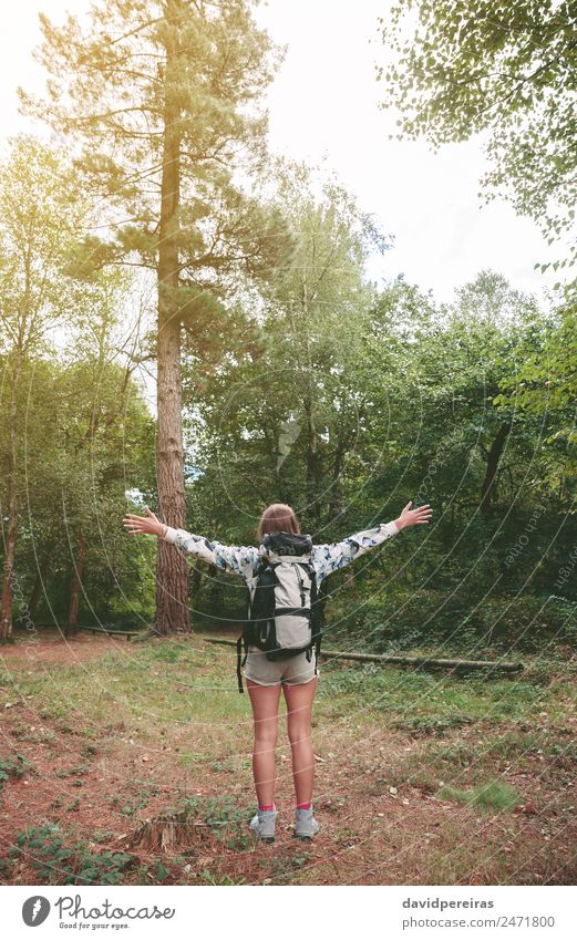 Hiker woman with backpack raising her arms into the forest Woman Human being Sky Nature Vacation & Travel Summer Landscape Tree Relaxation Joy Forest Mountain