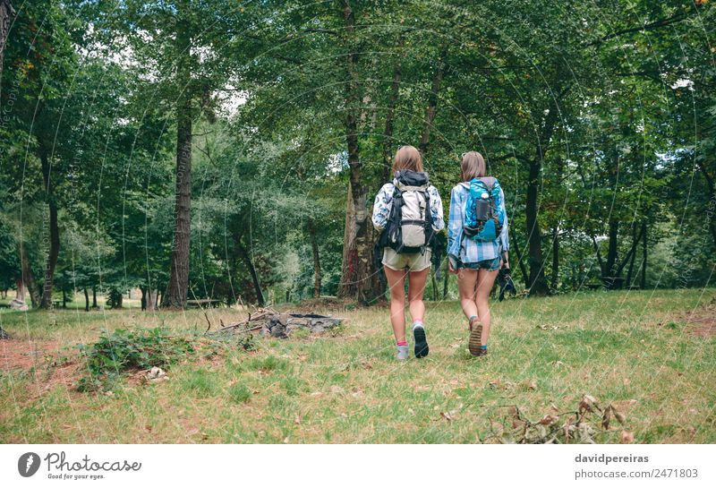 Two women friends with backpacks walking Woman Human being Nature Vacation & Travel Summer Landscape Tree Joy Forest Mountain Adults Lifestyle Autumn Sports