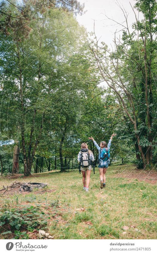 Hiker woman raising arms and enjoying with friend Woman Human being Nature Vacation & Travel Summer Landscape Tree Joy Forest Mountain Adults Lifestyle Autumn