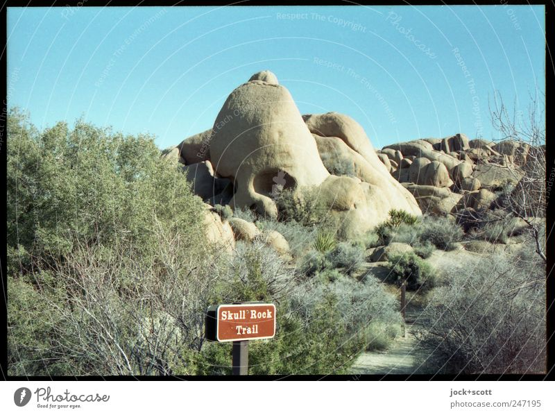 Skull Rock Nature Cloudless sky bushes Desert Sign Signage Exceptional Authentic Fantastic natural Uniqueness Whimsical Lanes & trails Erosion Similar English