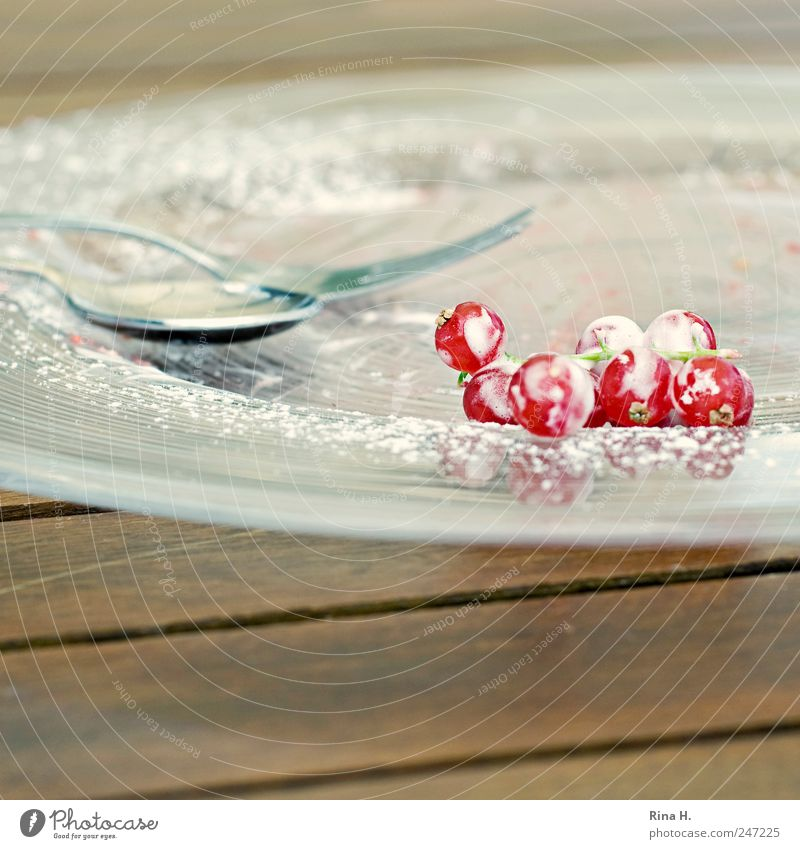 Apricot dumplings with fresh summer berries Fruit Dessert Crockery Plate Cutlery Fork Spoon To enjoy Bright Delicious Juicy Sour Red White